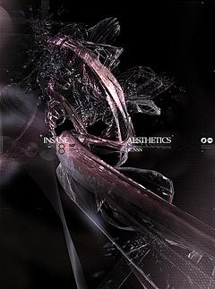 1N54N3 Aesthetics